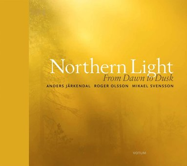 bokomslag Northern light : From dawn to dusk