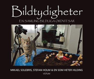 bokomslag Bildtydigheter : en samling bildliga ordvitsar