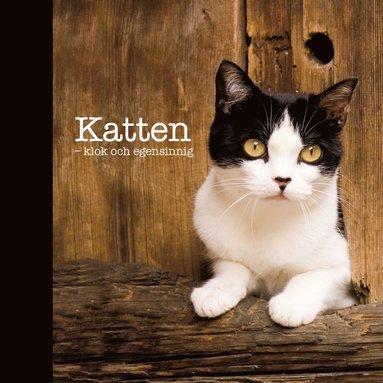 bokomslag Katten : klok och egensinnig