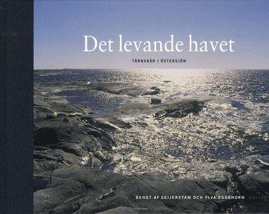 bokomslag Det levande havet : Tärnskär i Östersjön