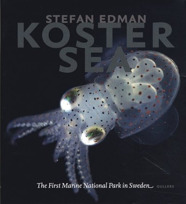 bokomslag Koster Sea : the First Marine National Park in Sweden
