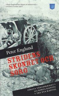bokomslag Stridens skönhet och sorg : första världskriget i 212 korta kapitel