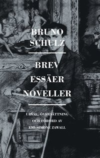 bokomslag Brev, essäer, noveller