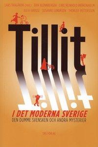 bokomslag Tillit i det moderna Sverige : den dumme svensken och andra mysterier