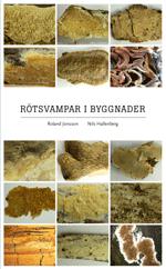 bokomslag Rötsvampar i byggnader