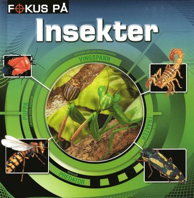 bokomslag Fokus på insekter