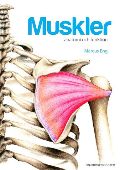 bokomslag Muskler anatomi och funktion