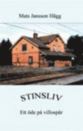 bokomslag Stinsliv