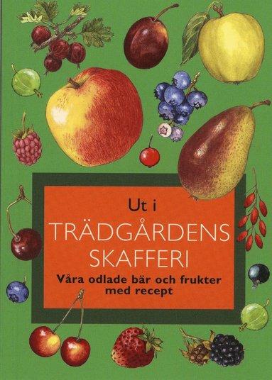 bokomslag Ut i trädgårdens skafferi : våra odlade bär och frukter med recep