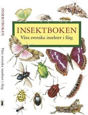 bokomslag Insektboken : 250 svenska insekter i färg