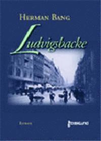 bokomslag Ludvigsbacke : roman