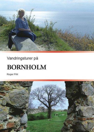 bokomslag Vandringsturer på Bornholm