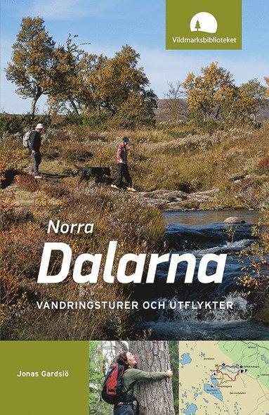 bokomslag Norra Dalarna : vandringsturer och utflykter