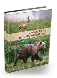 bokomslag Från sydlig äng till nordlig vildmarkstjärn