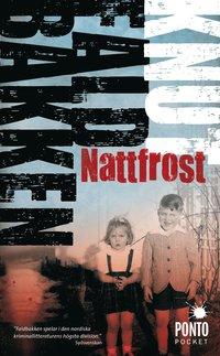 bokomslag Nattfrost