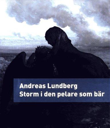 bokomslag Storm i den pelare som bär : en berättelse