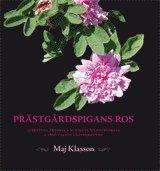 bokomslag Prästgårdspigans ros: Albertina Fredrika Burmans bildningsresa genom 1860-t