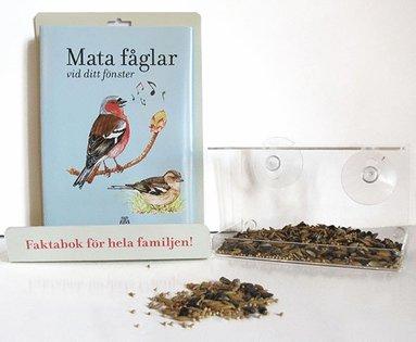 bokomslag Mata fåglar vid ditt fönster