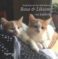 bokomslag Rosa & Liksom : en kattbok