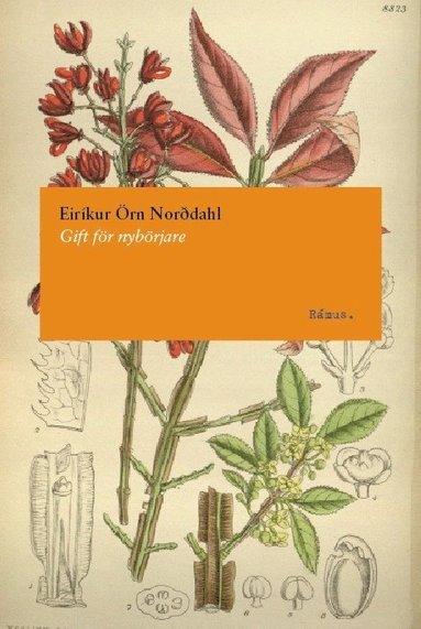 bokomslag Gift för nybörjare