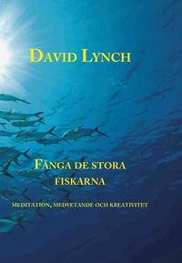 bokomslag Fånga de stora fiskarna