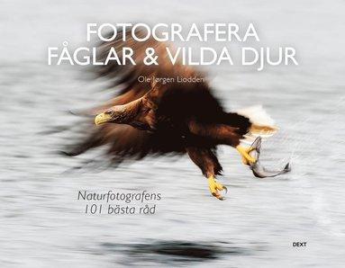 bokomslag Fotografera fåglar & vilda djur: naturfotografens 101 bästa råd