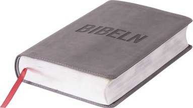 bokomslag Bibeln för alla