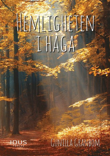 bokomslag Hemligheten i Haga