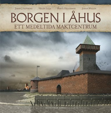bokomslag Borgen i Åhus : ett medeltida maktcentrum