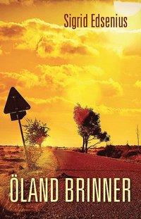 bokomslag Öland brinner