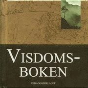 bokomslag Visdomsboken (Stora Guldböcker)