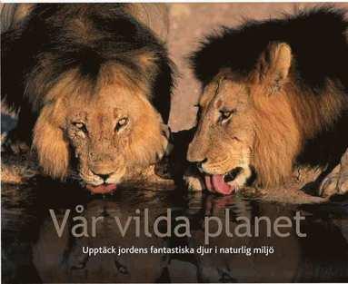 bokomslag Vår vilda planet : upptäck jordens fantastiska djur i naturlig miljö
