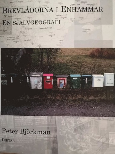 bokomslag Brevlådorna i Enhammar : en självgeografi