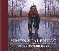 bokomslag Things from the Flood