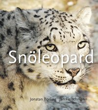 bokomslag Snöleopard