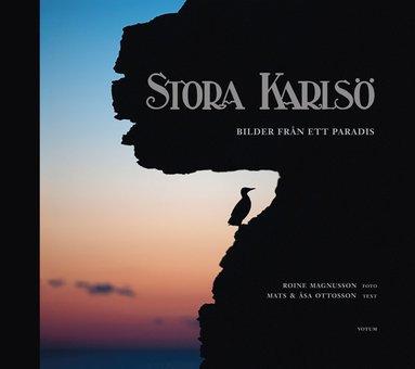 bokomslag Stora Karlsö : bilder från ett paradis