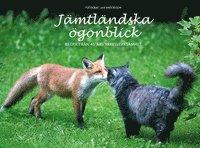 bokomslag Jämtländska ögonblick : bilder från 45 års yrkesverksamhet