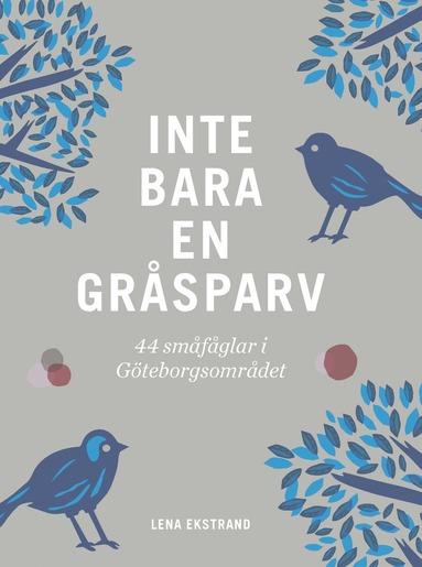 bokomslag Inte bara en gråsparv : 44 småfåglar i Göteborgsområdet