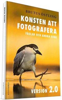 bokomslag Konsten att fotografera fåglar och andra djur : version 2.0