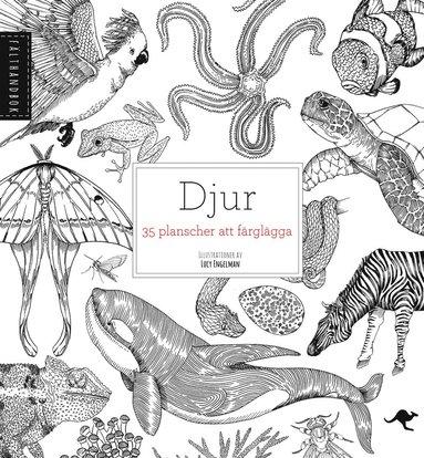 bokomslag Djur : 35 planscher att färglägga