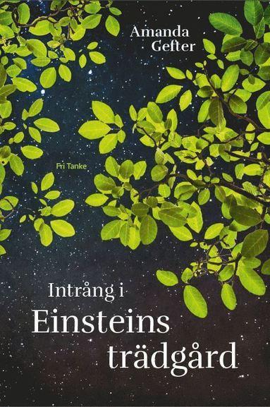 bokomslag Intrång i Einsteins trädgård : en far, en dotter, ingentings mening och alltings början