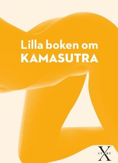 bokomslag Lilla boken om kamasutra