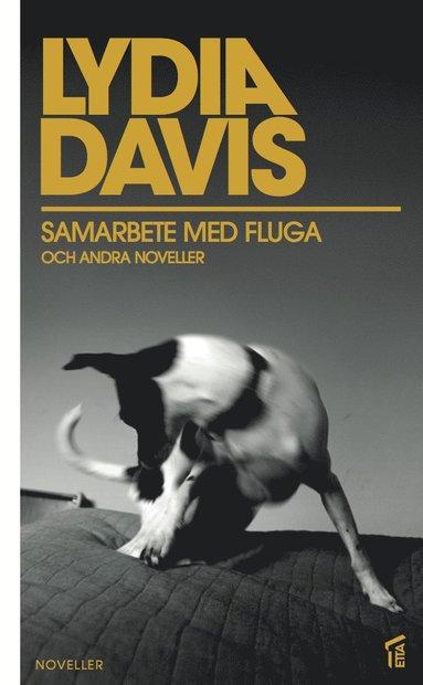 bokomslag Samarbete med fluga och andra noveller