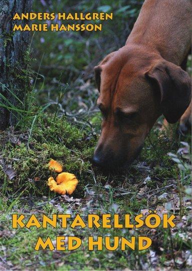 bokomslag Kantarellsök med hund