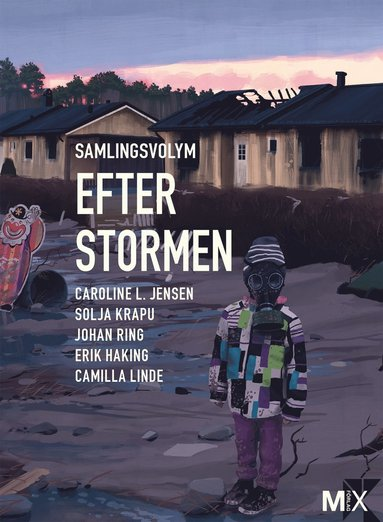 bokomslag Efter stormen : utökad samlingsvolym