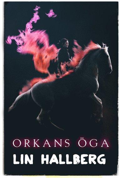 bokomslag Orkans öga
