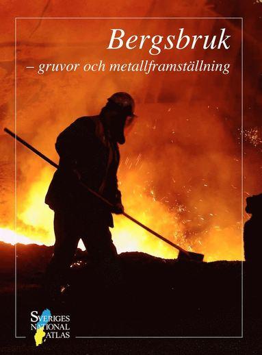 bokomslag Bergsbruk : gruvor och metallframställning