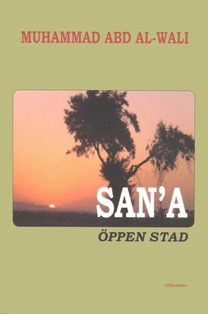 bokomslag San'a - Öppen stad