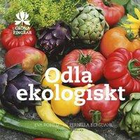 bokomslag Odla ekologiskt