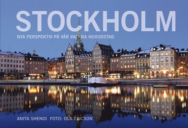 bokomslag Stockholm : nya perspektiv på vår vackra huvudstad